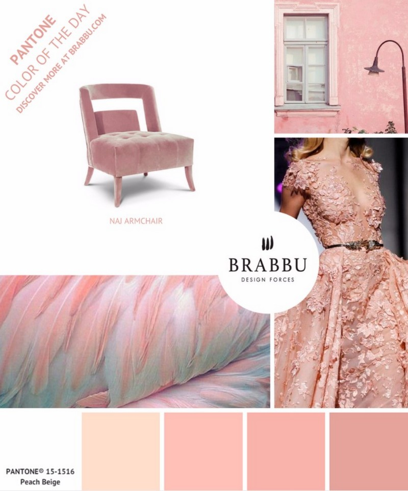 5 Colorful Interior Design Ideas Featuring Patone Colors of the Week ➤ Discover the season's newest designs and inspirations. Visit Design Build Ideas at www.designbuildideas.eu #designbuildideas #homedecorideas #InteriorDesignProjects @designbuildidea