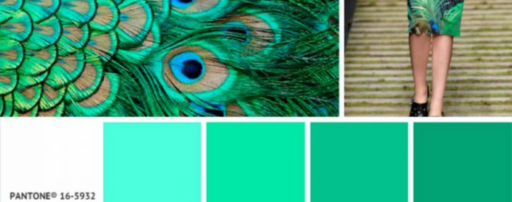 5 Colorful Interior Design Tips Featuring Patone Colors of the Week ➤ Discover the season's newest designs and inspirations. Visit Design Build Ideas at www.designbuildideas.eu #designbuildideas #homedecorideas #InteriorDesignProjects @designbuildidea
