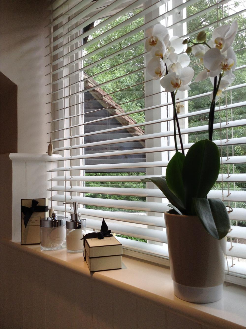 Adamo Interiors Has a Passionate Vision for Creating Bespoke Design 2