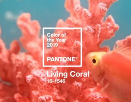Embrace the Warm Tones of the 2019 Color of the Year Chosen by Pantone