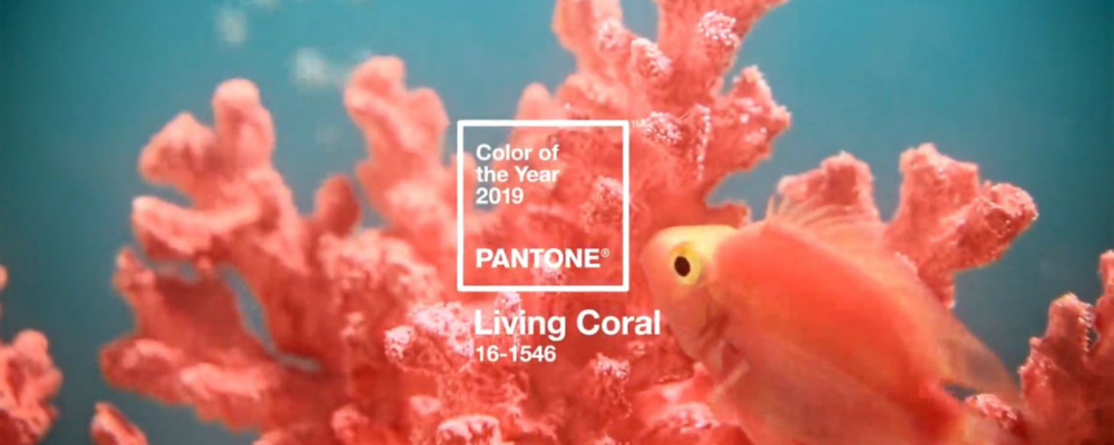 color of the year Embrace the Warm Tones of the 2019 Color of the Year Chosen by Pantone featured 1